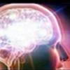 :brain3: