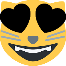 :black_heart_eyes_cat: