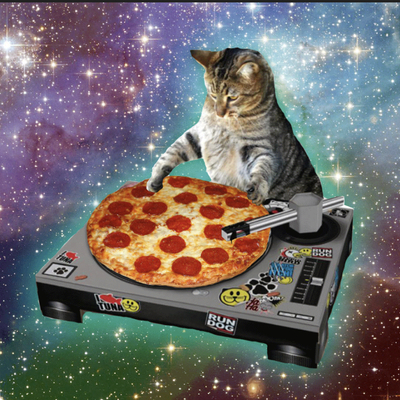 pizzacat@radical.town