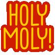 :sergeHolyMoly: