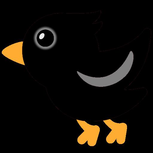 :black_bird: