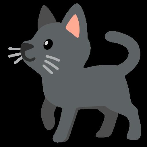 :cat_black: