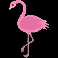 :flamingo:
