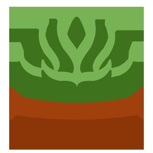 :succulent: