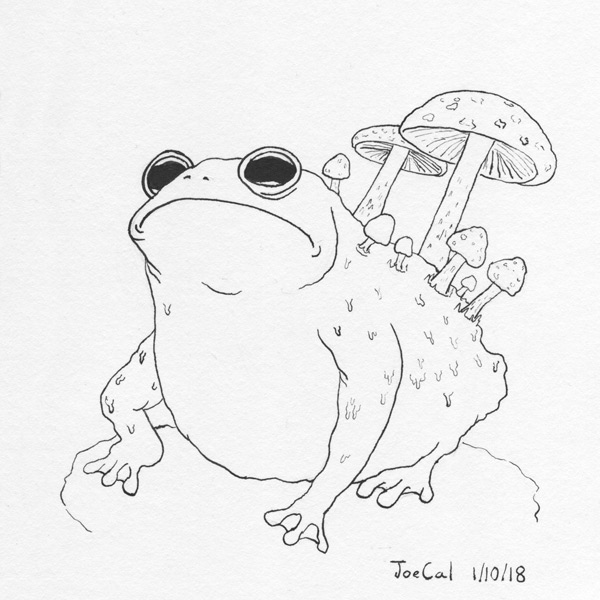 joe callanan i managed to half break my cheap fountain pen but Canon Ink Cartridges an ink drawing of a toad with poisonous mushrooms sprouting from its back