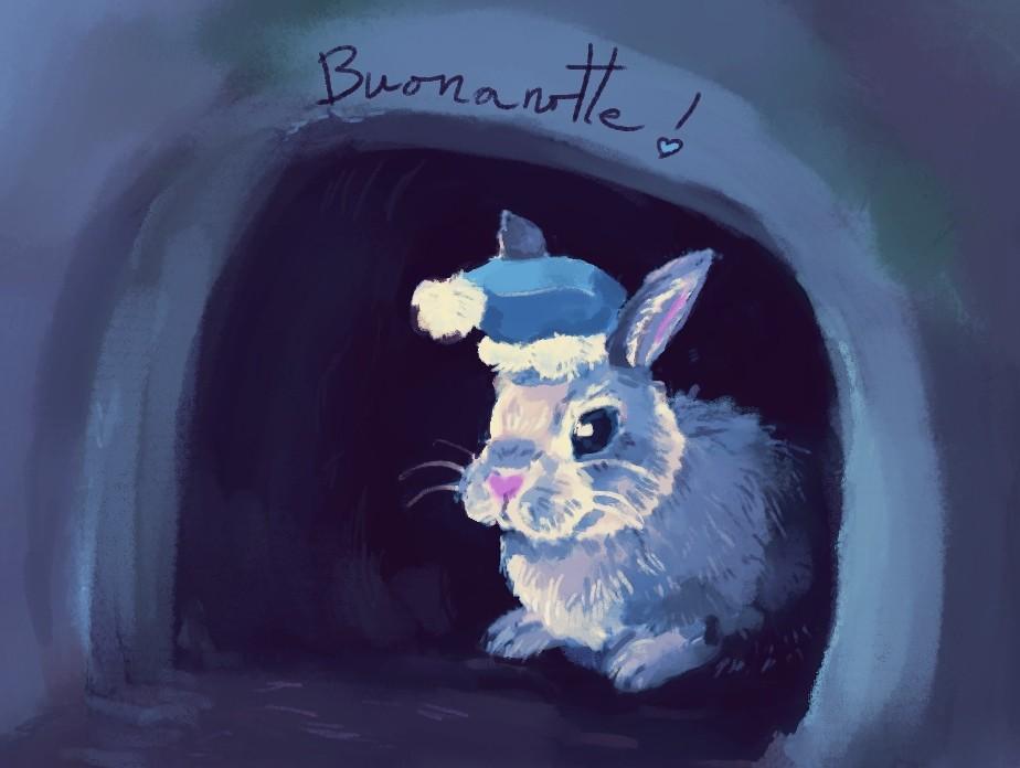 Bunny in her burrow. Buonanotte.