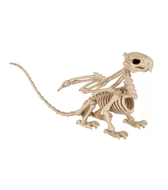 A gryphon skeleton for Halloween decor. The hind paws are bird feet like the front paws.