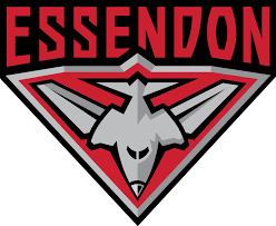 logo for the essendon afl team, black white and red stylised bomber plane in a triangle emblem format