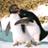 :penguin_hug: