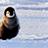 :penguin_fall: