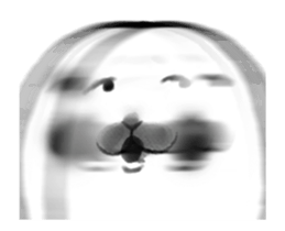 :seal_blur: