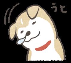 :puppyinu_05: