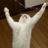 :cat_yes: