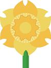 :daffodil: